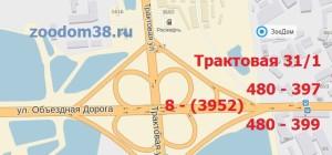 ZooDom-traktovaya-31-1